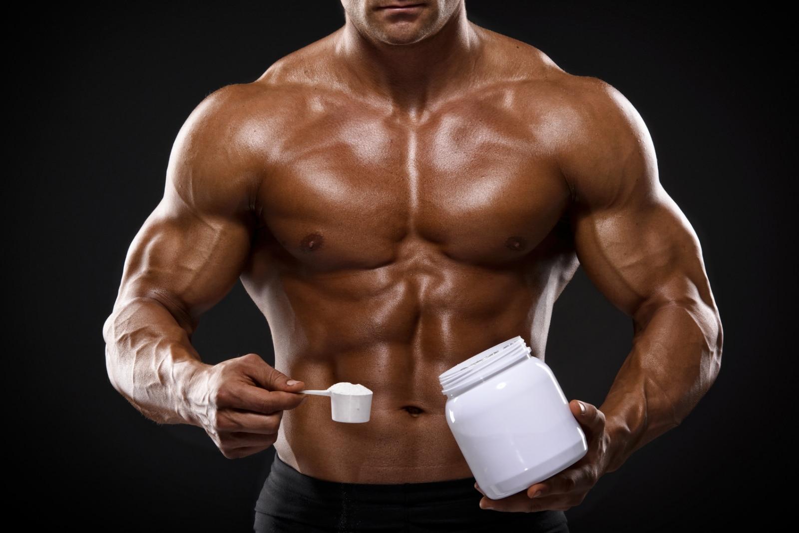 créatine prise de muscle