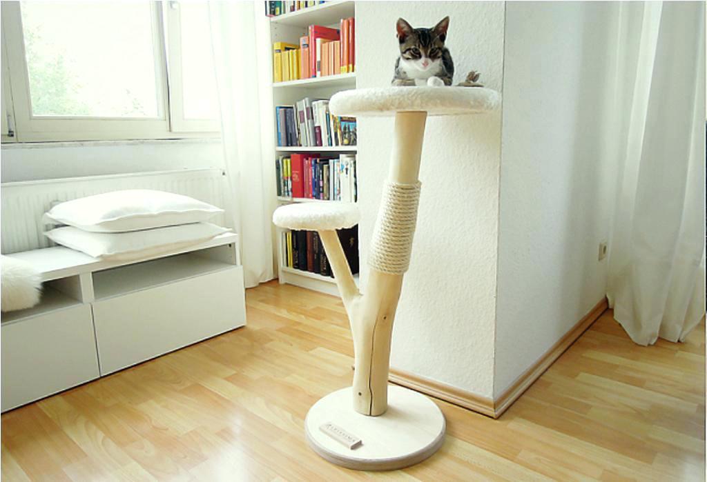 bien laver un arbre à chat